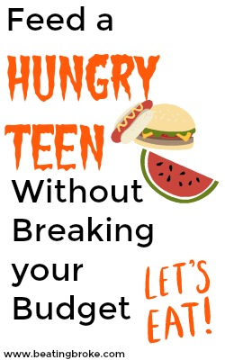 Feed a Hungry Teen