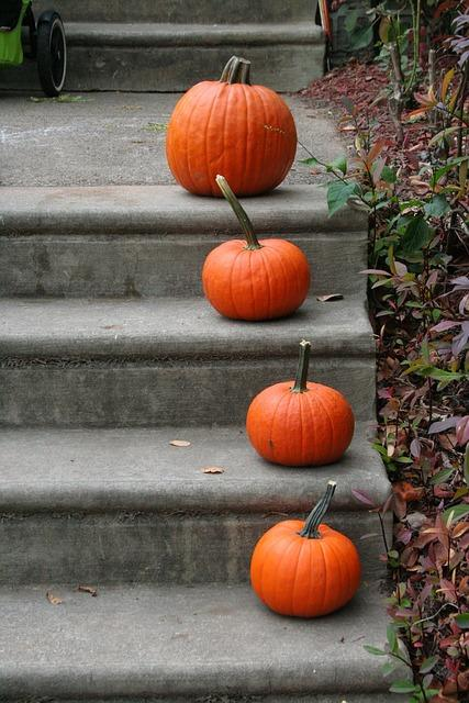 frugal fall home decorations